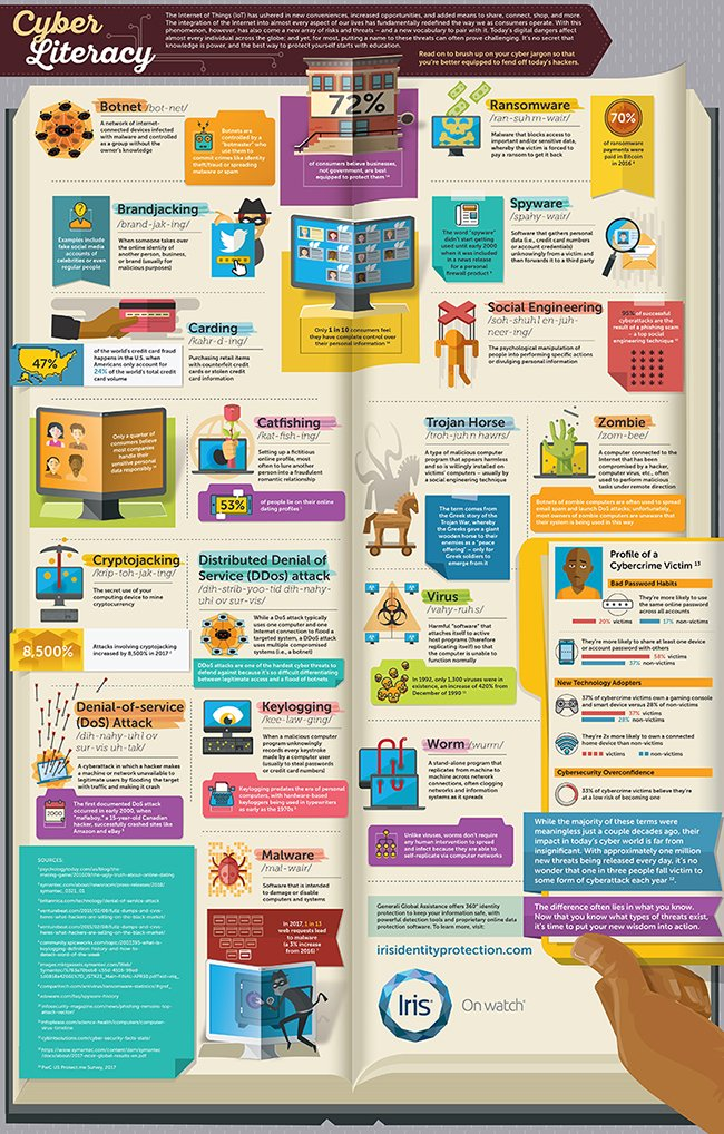 Cyber Literacy Infographic FINAL-preview-1