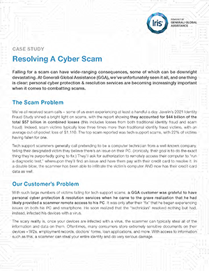 cyber-services-wp-preview